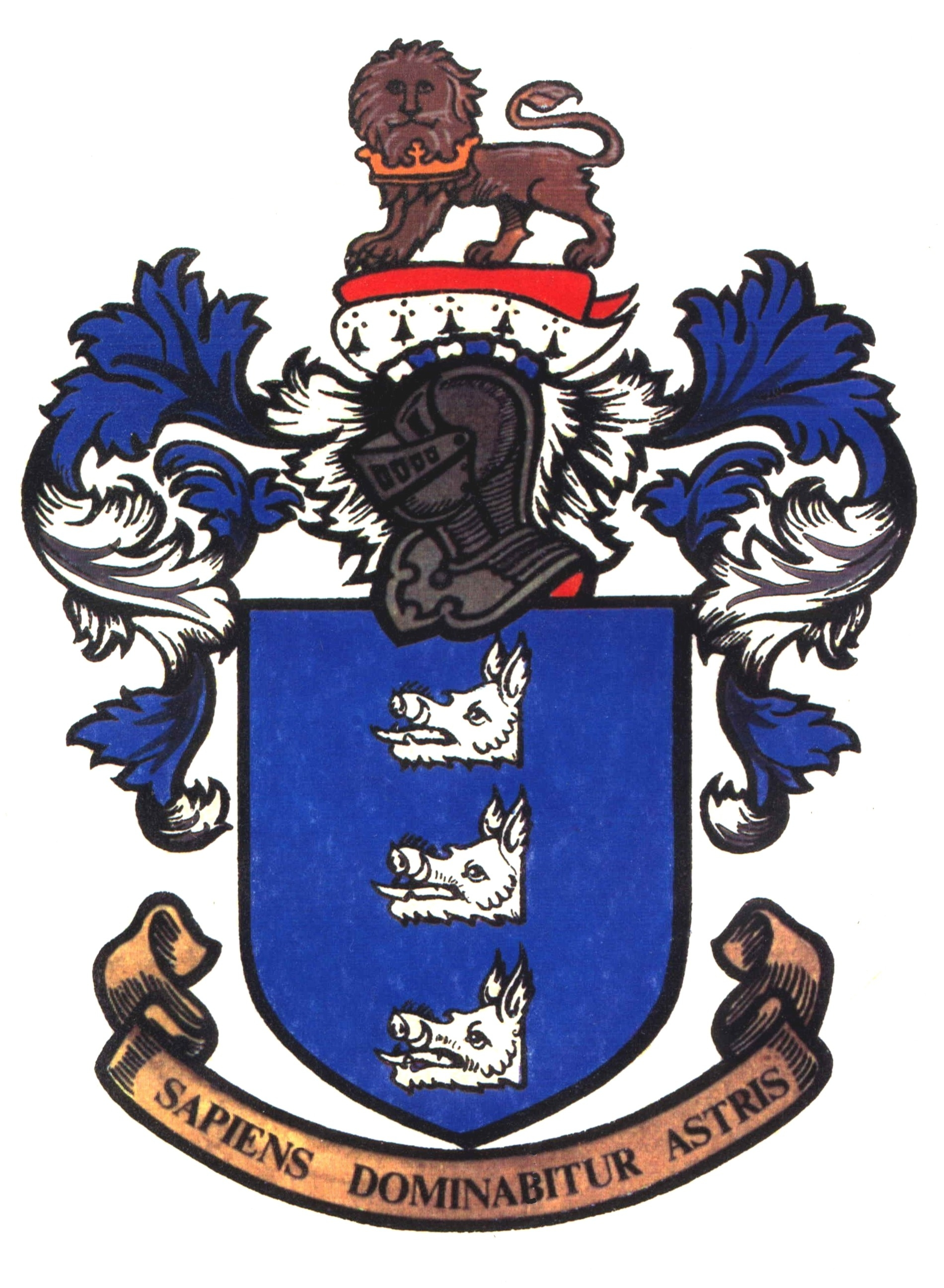 Coat Of Arms Healy Clan Organization Healy Family Network